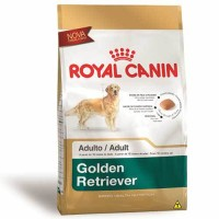 ROYAL RAÇAS GOLDEN RETRIEVER ADULTO 12KG